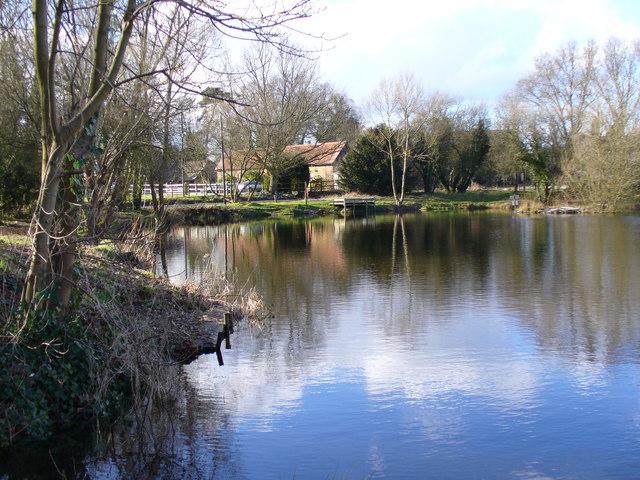 Looking Across Kingsley Pond