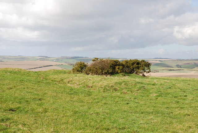 Earthworks on Marleycombe Hill