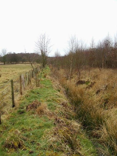 Scots Dyke