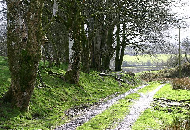 Footpath to Glan Irfon
