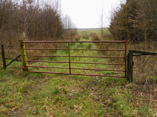 Gate on the Scots Dyke
