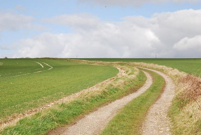 Track across Croucheston Down