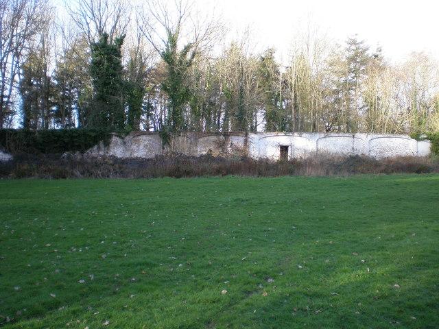 Old walled gardens at Ynysymaengwyn.