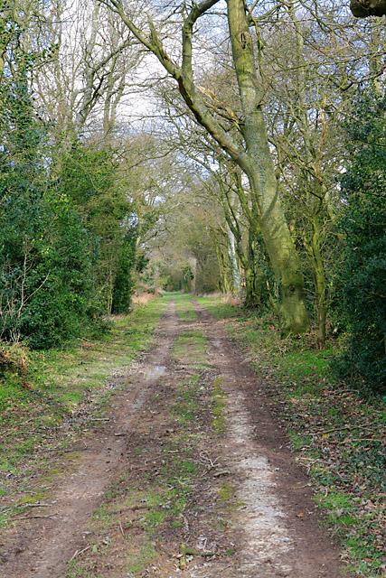 Wayfarer's Walk south of Breach Farm