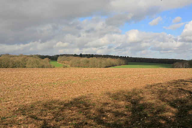 Farmland SE of Breach Farm