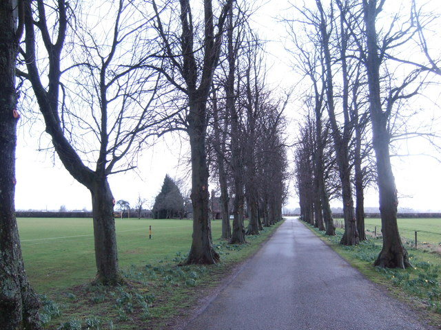 Avenue at the Royal Agricultural College