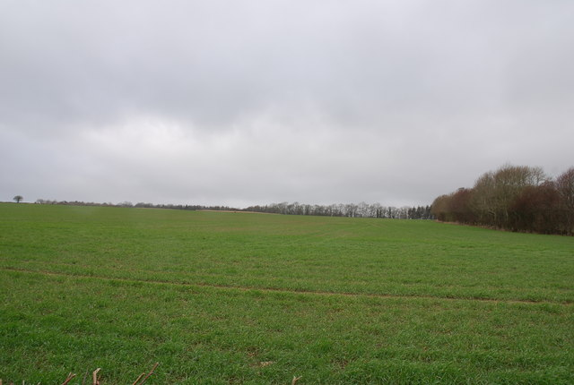 View towards Fovant Wood