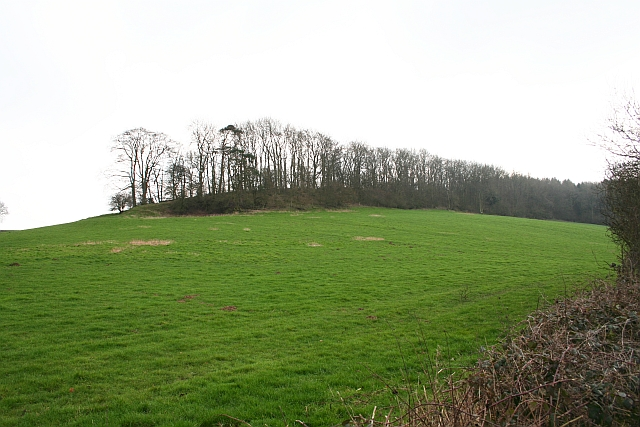 North end of the Frith Wood Ridge