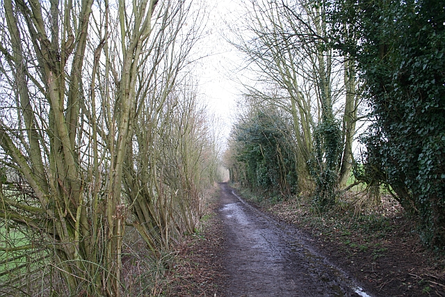 Track to Frith Farm