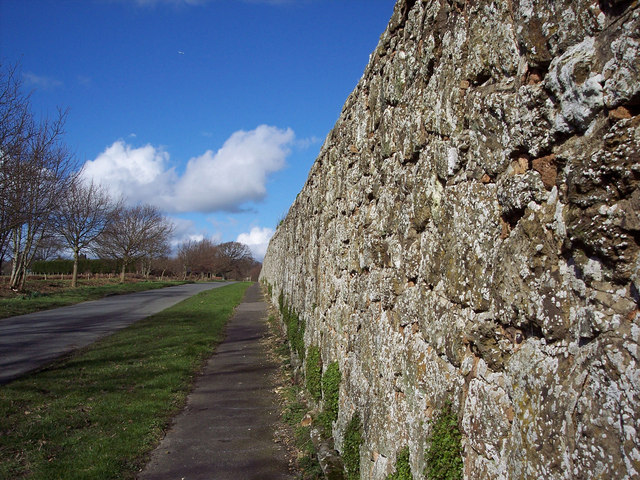 Wall along Upperton Road, Tillington