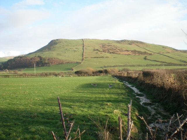 Ditch leading to Ynysymaengwyn.