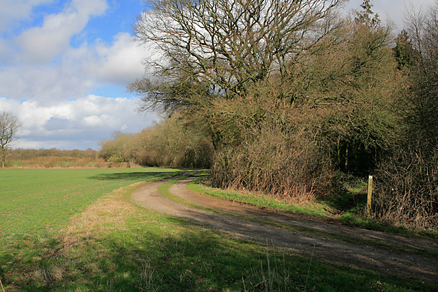 Bridleway entering southern end of Furzedown (wood)