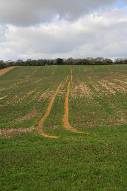 Farmland on Woodmancott Down