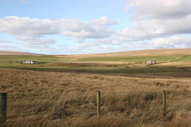 Dispersed settlement