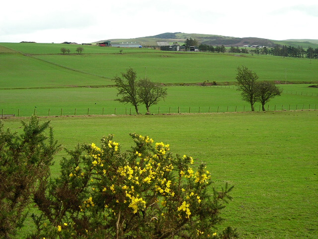 View Across Fields To Branetrigg