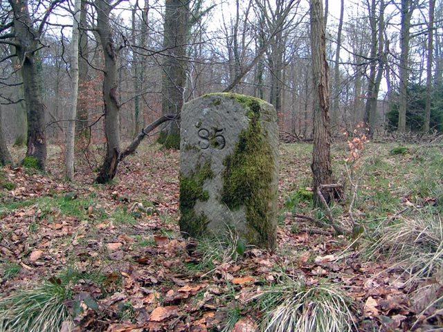 Forest Boundary Stone