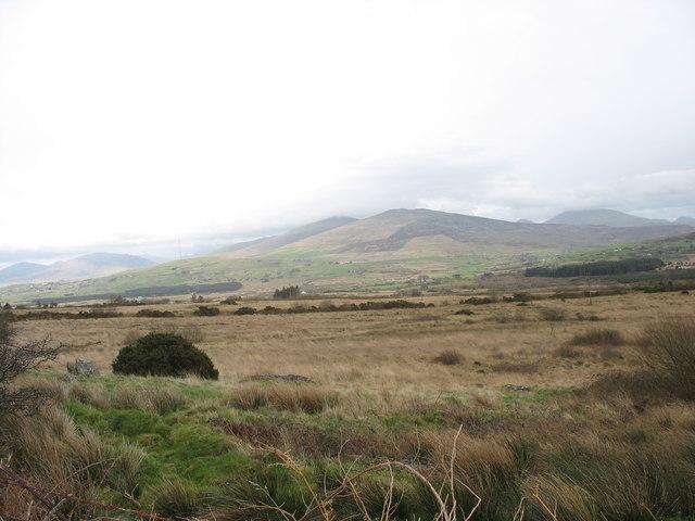 Bogland below Cae-hir-isaf