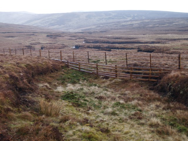 Two-tier fence, Muckle Knees
