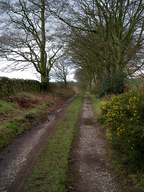 Tinwald to East Tinwald Footpath