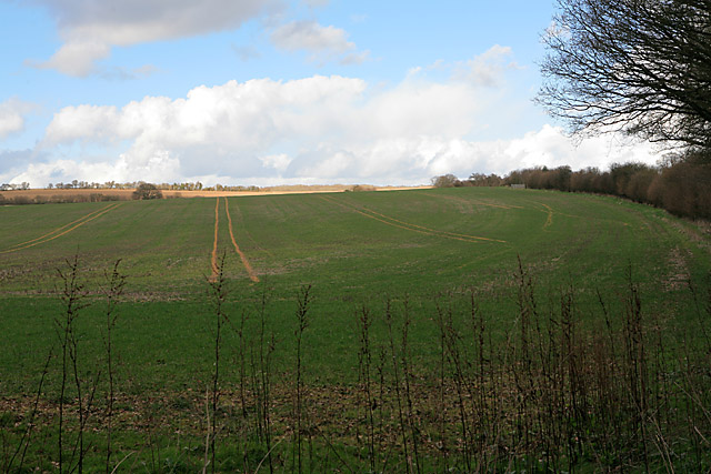 Farmland east of Whiteway Farm