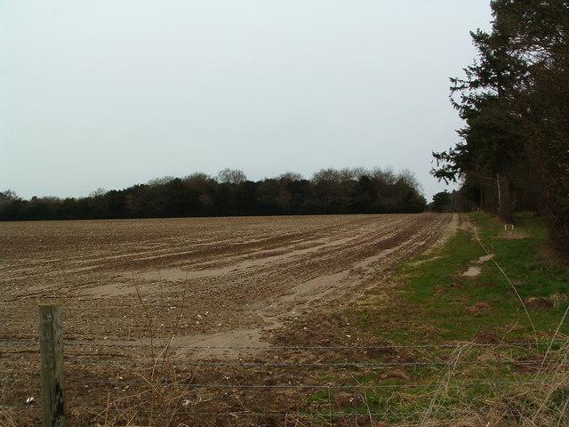 Towards Sugarhill Covert