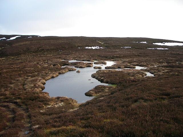 Cold wet moorland