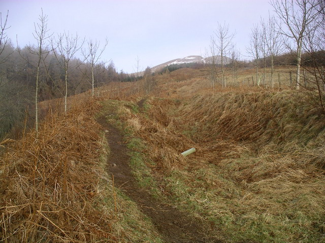 The path to Meall Greigh