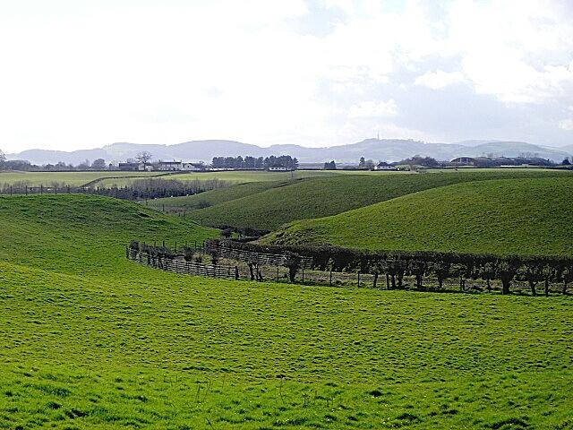 Fields Near Tinwald Parks