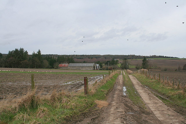 Newpark Farm to the left of the lane