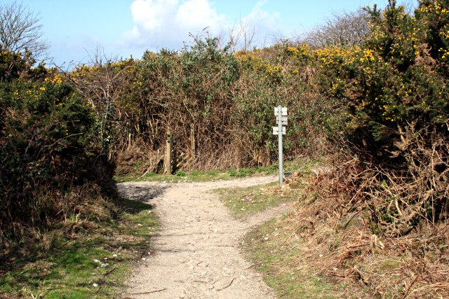 Bridleway Junction