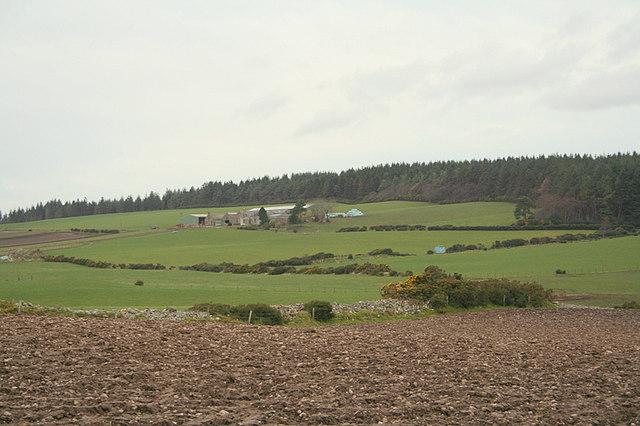 Looking westwards towards Cultain Farm