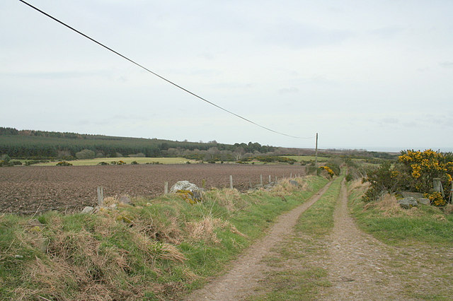 The lane to Hughie's Knowe