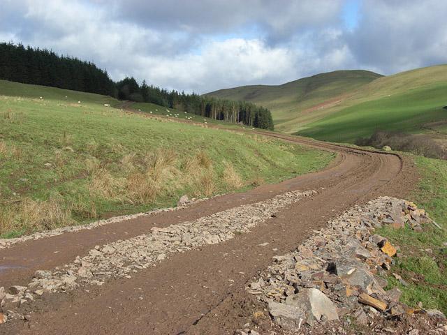Track approaching Dundoran Plantation