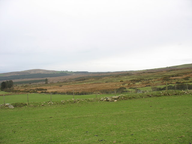 Farmland reclaimed from the bog at Cors-y-wlad Uchaf