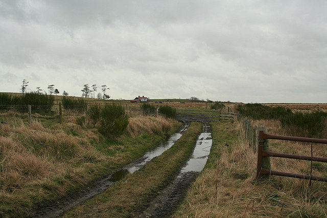 A sodden lane to Culvie Croft