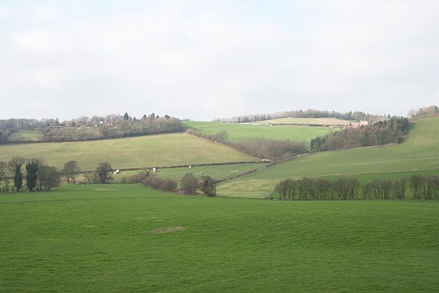 Wellington Heath on Ochre Hill