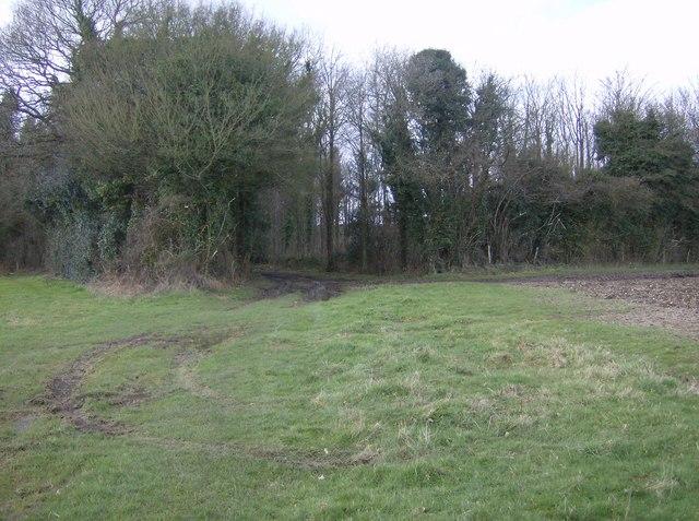 Footpath to Markwells Wood
