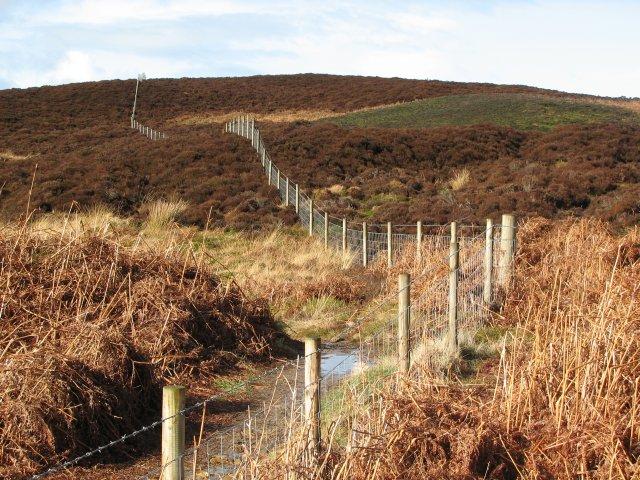 Fence by the Glen Burn
