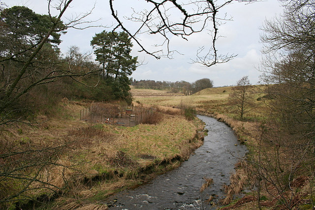 A chicken run on the banks of the burn by Mill of Kinnairdy.
