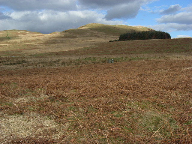Moorland above Beldcraig Linn