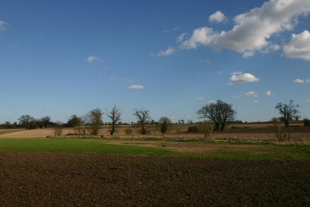 Farmland at East Harling Heath