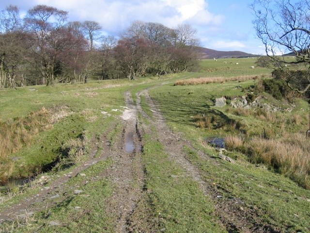 Footpath to Hafod-lwyd