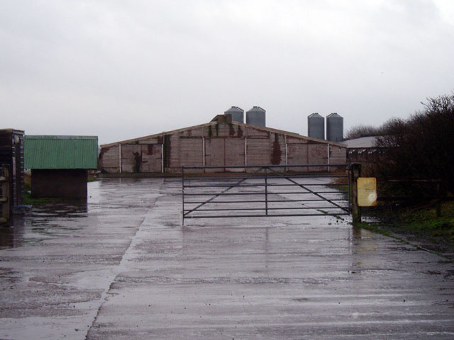 Chicken Sheds at Balado Airfield