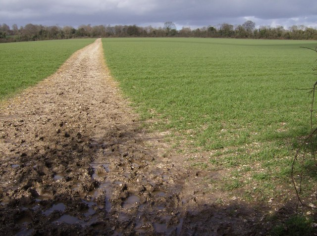 Bridleway near Cowdown Farm