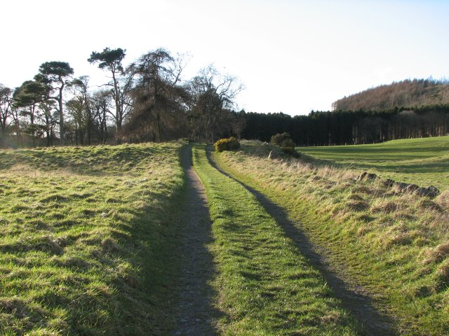 Mount Hill path