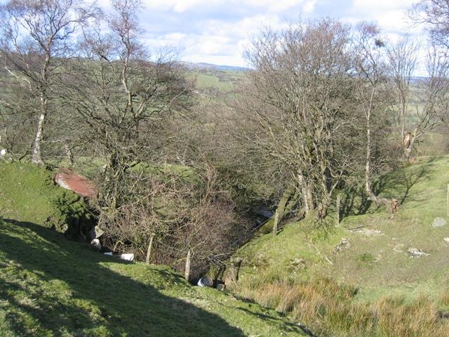 Stream Valley near Gwern-brain-uchaf
