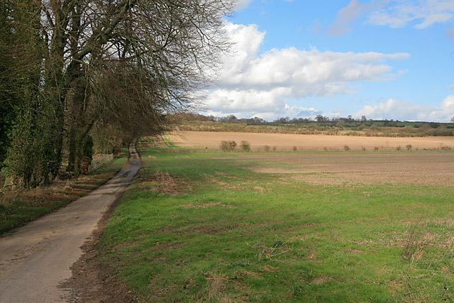 Farmland and minor road north of East Stratton