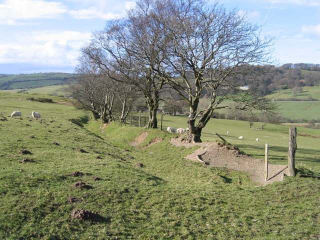 Ancient Hedge Line and Footpath