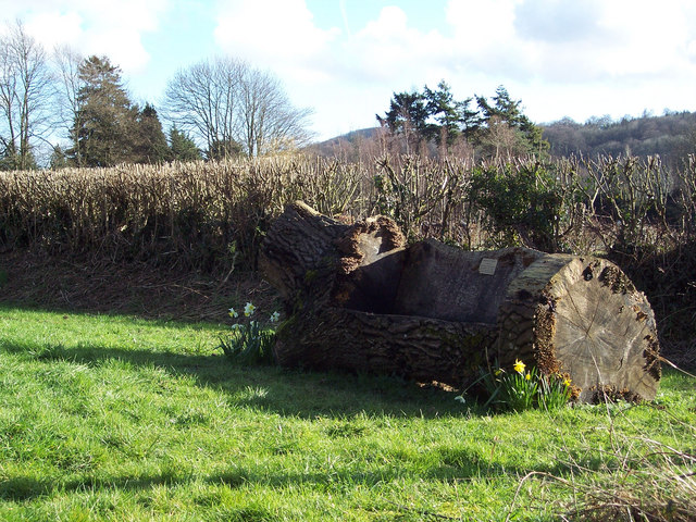 Log seat opposite Holy Cross Church, Bignor