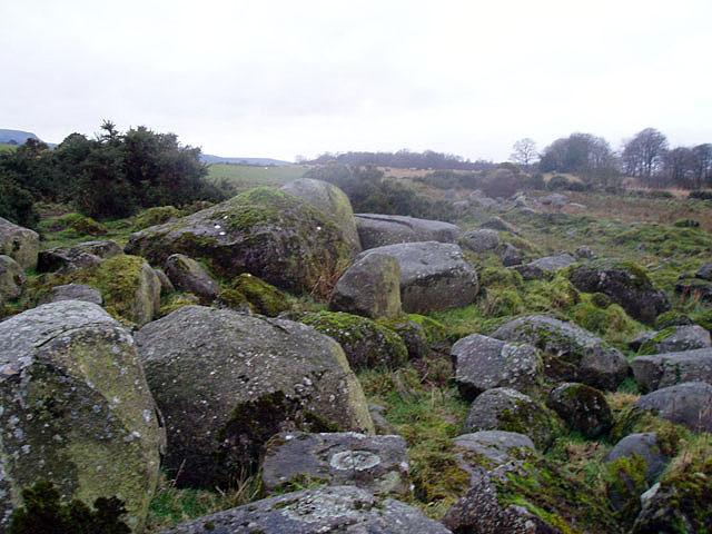 Glacial erratics in the plain of Kinross
